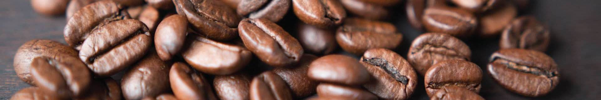 Organic & Fairtrade Coffee - ECOLECTIA