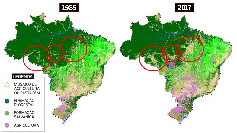 Amazonas deforestación satélite